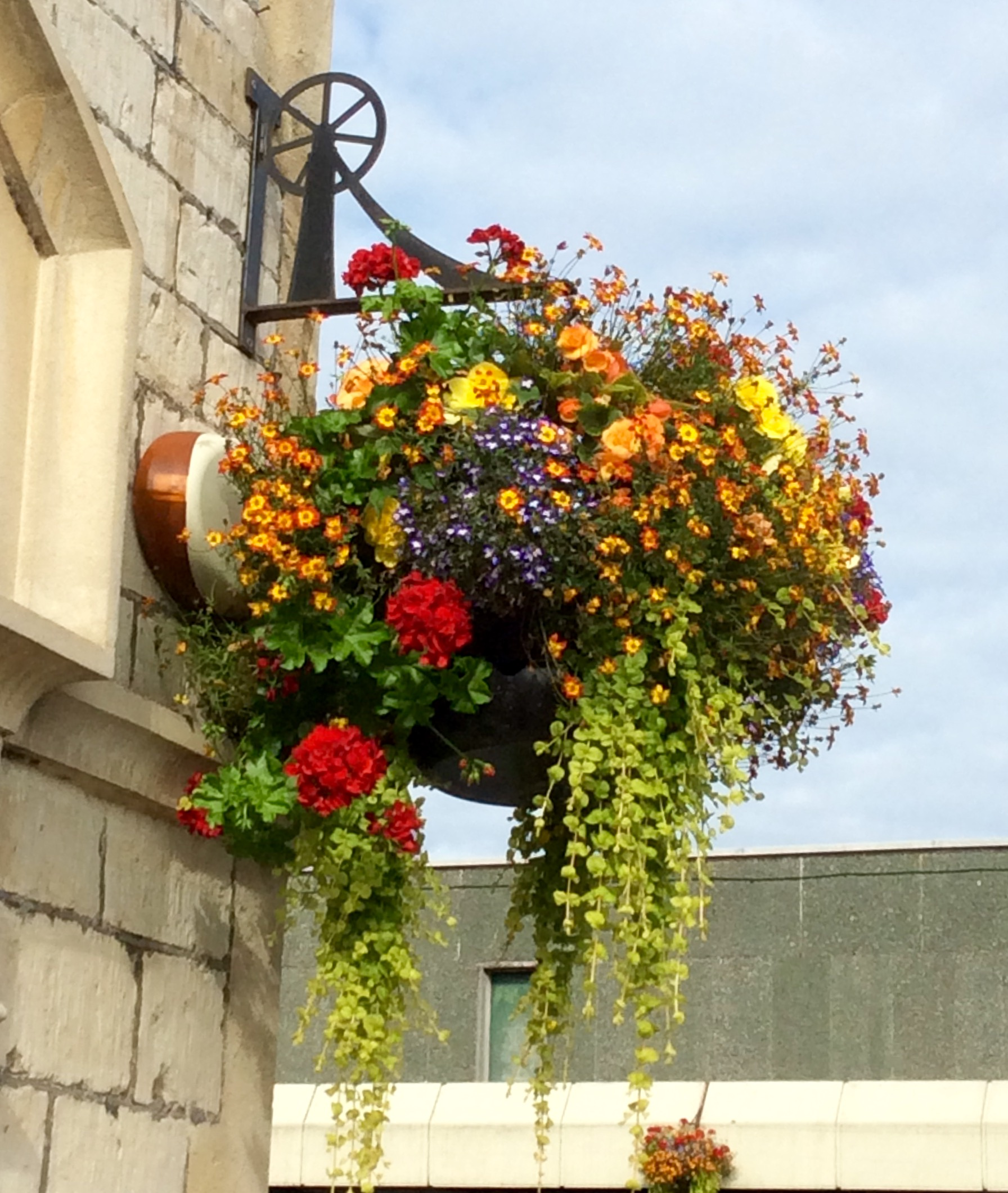 Good Luck Radstock in Bloom